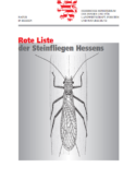 Rote Liste der Steinfleigen Hessens, 1998 (Red List of the Stoneflies of Hessen)